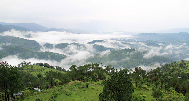 Fantastic Places In The Green Valleys Of Lansdowne