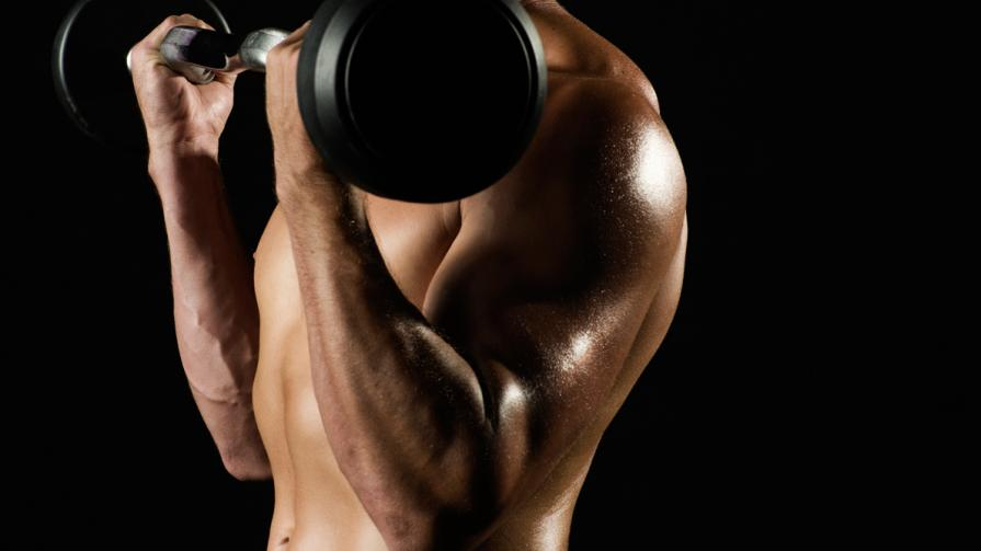 Anti Ageing & Muscle Building –A Short Overview