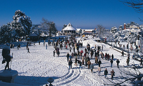 Plan On A Trip To The Mountains With The Best Shimla Manali Travel Packages