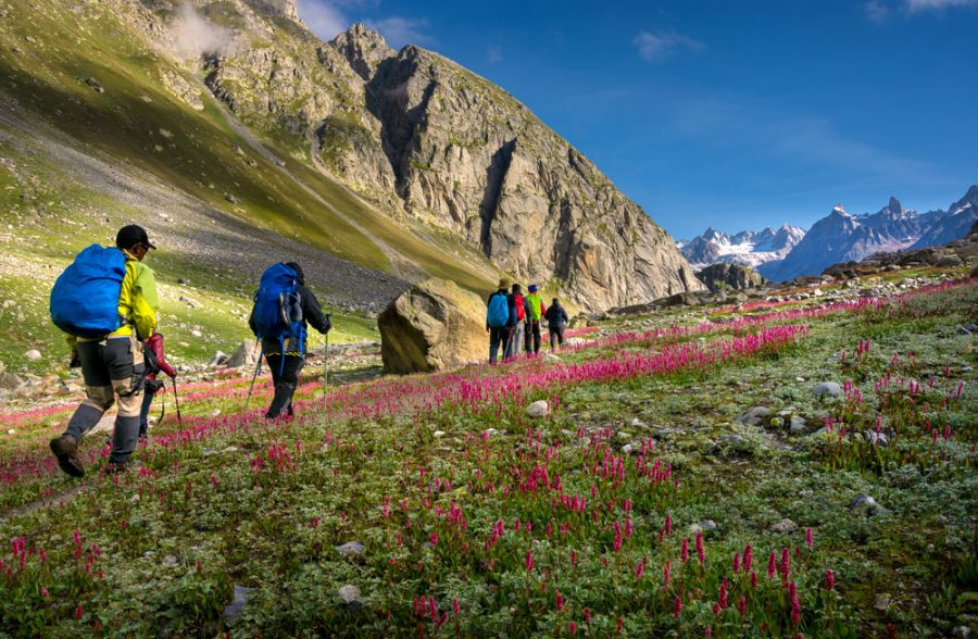 5 Quick And Efficient Tips To Plan Your India Summer Vacation